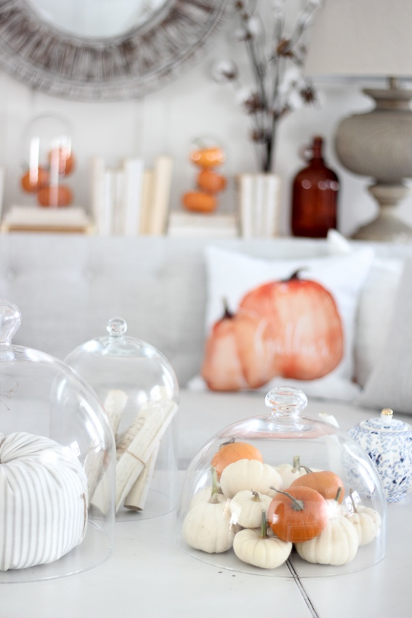 display-little-pumpkins-in-your-living-room