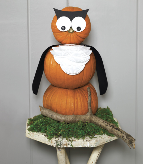 place-this-night-owl-in-your-childs-room