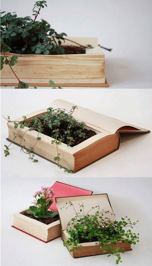 Weird planters