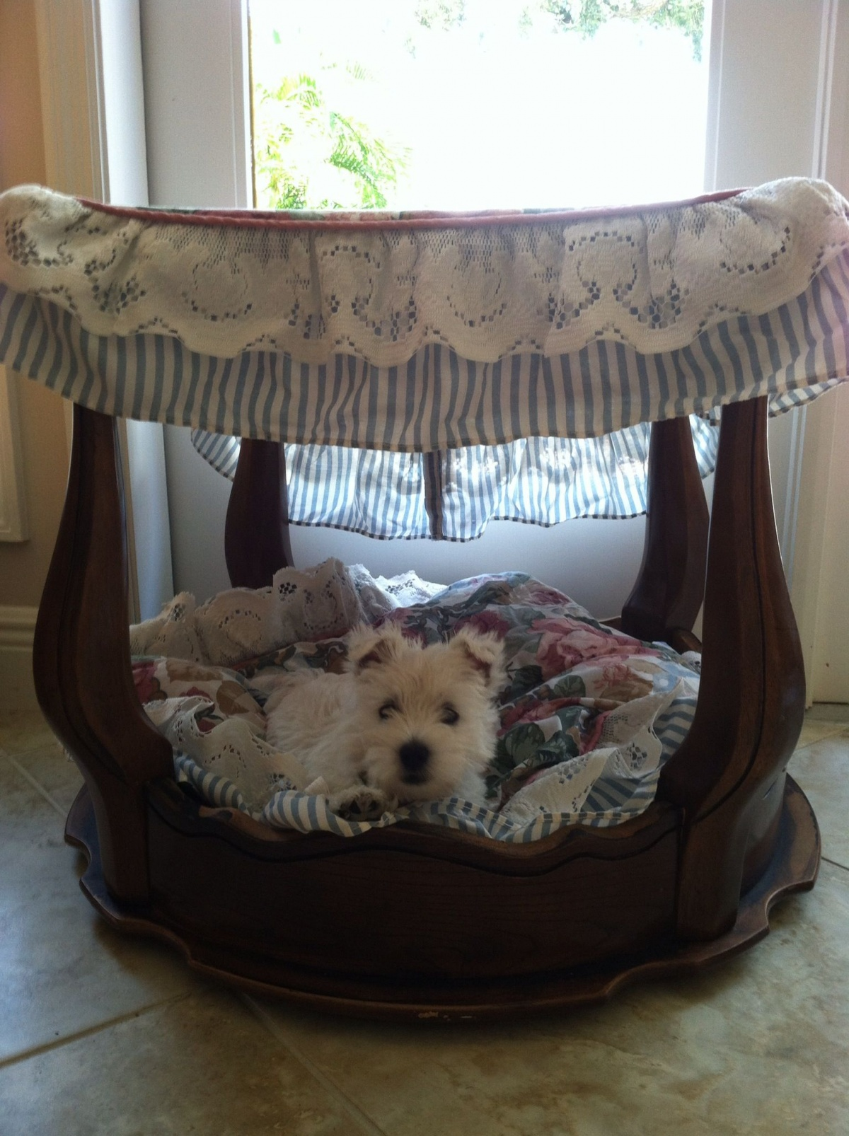 A stool can turn into a four-poster pet bed